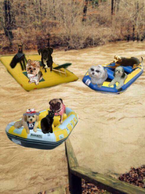 Friendly on raft ride