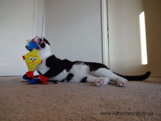 Oliver and the 4 cats Kite toy