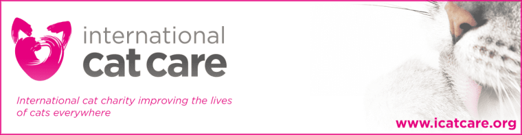 icatcare banner