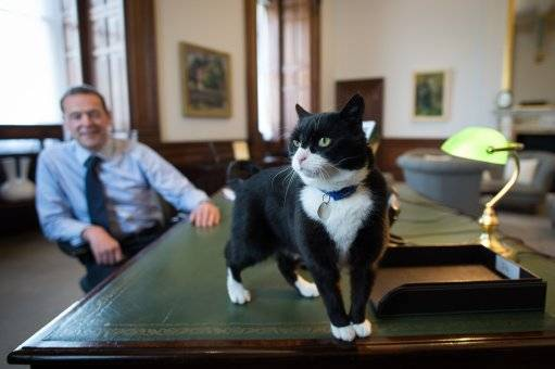 Palmerston in his new office