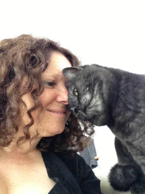 cat-behaviourist