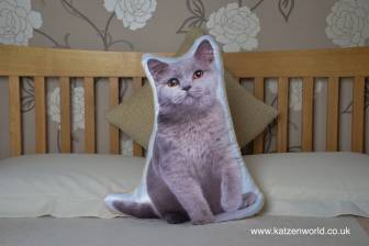 asc-1026-british-blue-cat-bed