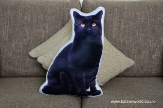 asc-1034-black-cat-sofa
