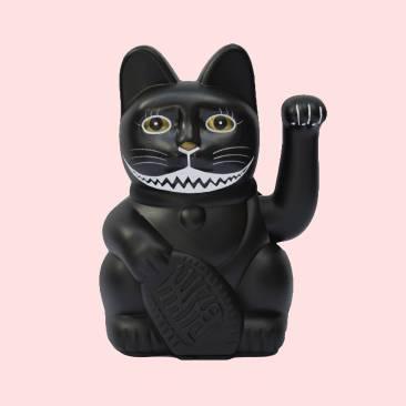 lucky-chehsire-cat-insta