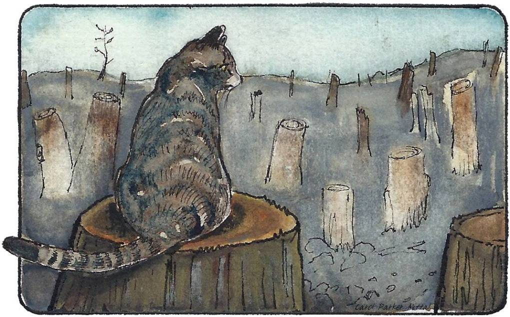 Watercolor and pen drawing. Cat in a clearcut woods.
