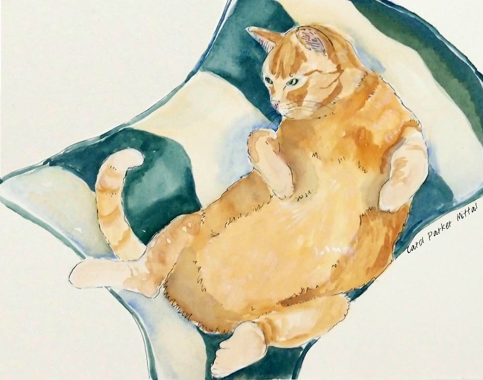 Tummy Rub Friday Art Cat