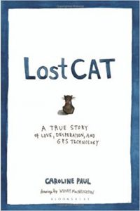 top 5 cat books by Anita Kelsey