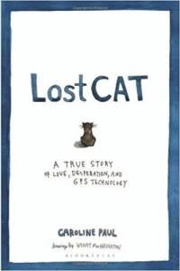 top 5 cat books by Anita Kelsey