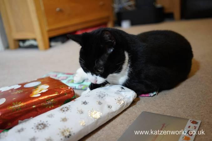 Christmas presents Secret Paw0016