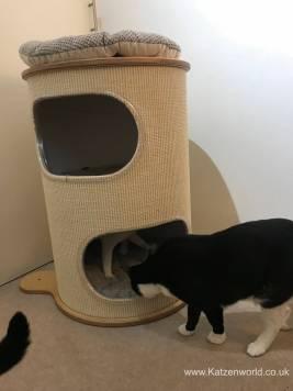 Rufi Scratch Tower0005