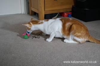 Katzenworld bowless feeder0010