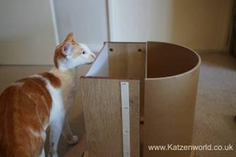 Katzenworld Catit Vesper0003