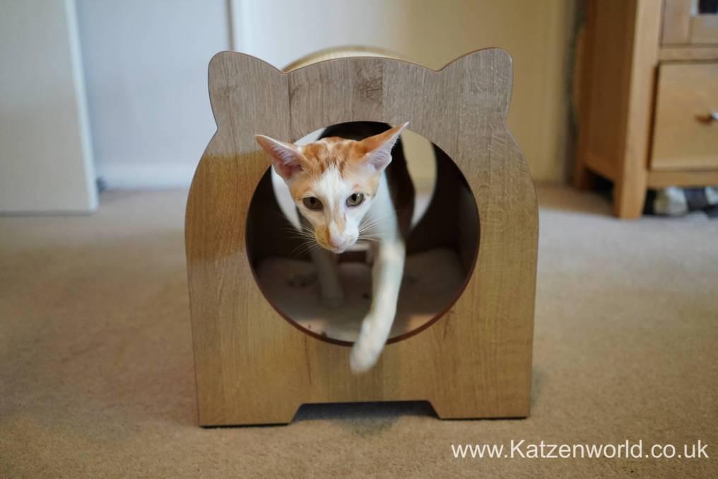 Katzenworld Catit Vesper0015