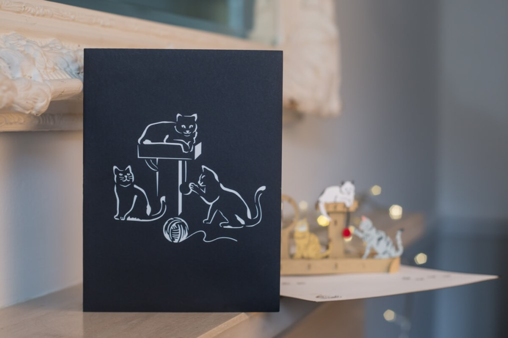 Cats-Playing-Pop-Up-Card-Cover