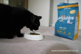 Feline Cuisine Katzenworld0012