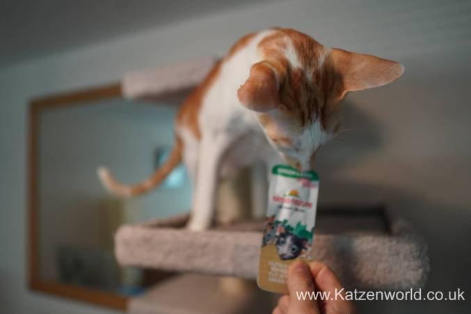 Katzenworld Almo Nature Snack0000