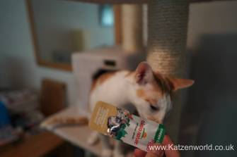 Katzenworld Almo Nature Snack0002