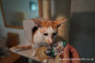 Katzenworld Almo Nature Snack0003