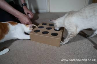 Katzenworld Whack-a-Mouse0006