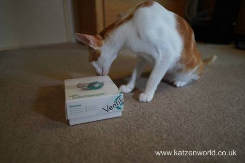 Katzenworld ventifresh 2