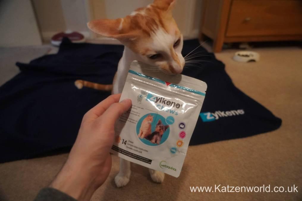 Katzenworld Zylkene0006