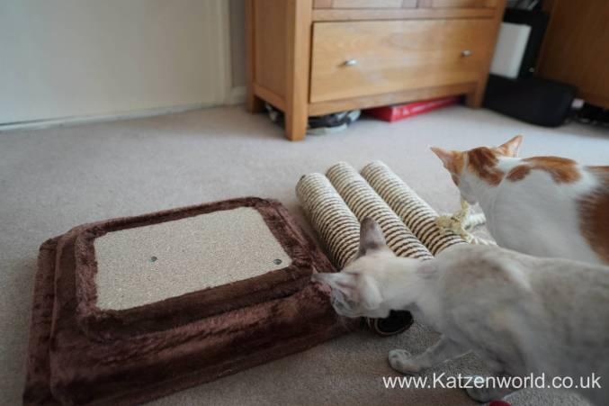 Katzenworld animed direct cat scratcher0001