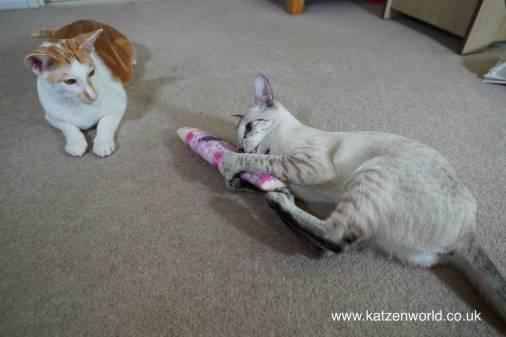 Katzenworld Japanese cat toy0023