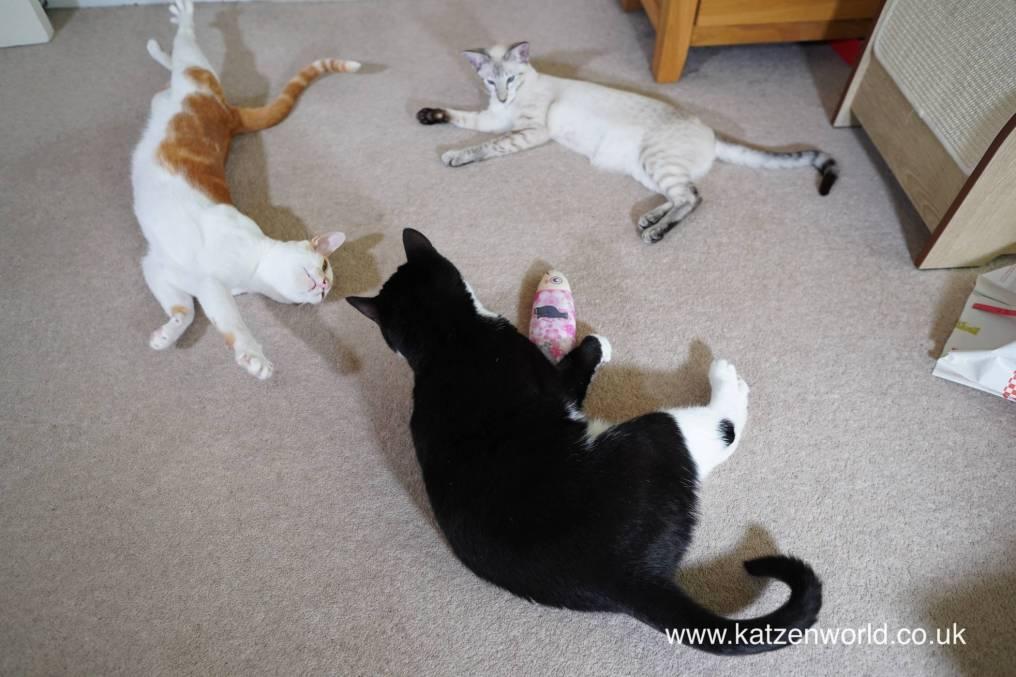 Katzenworld Japanese cat toy0038