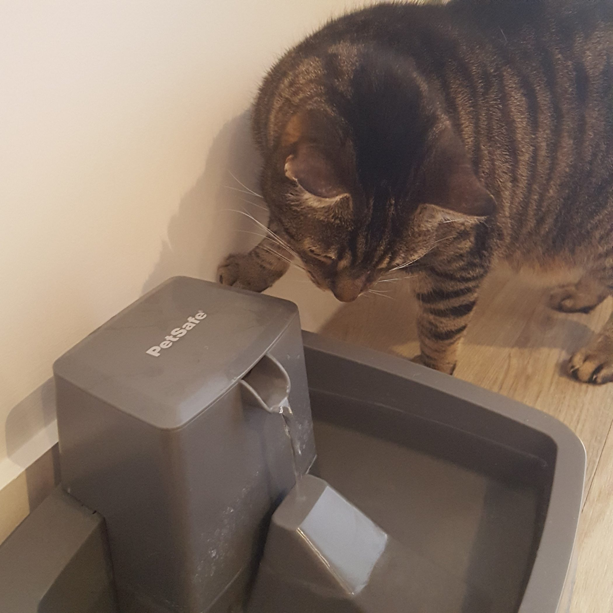 Dirk's Very First Water Fountain