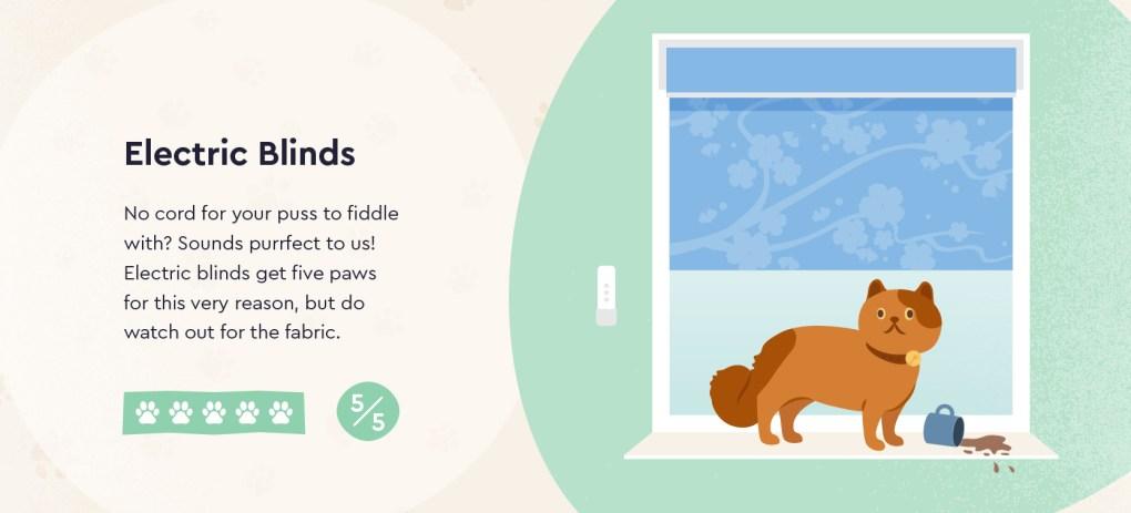 Pet Friendly Electric Blinds