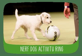 tv_nerf_activity_ring