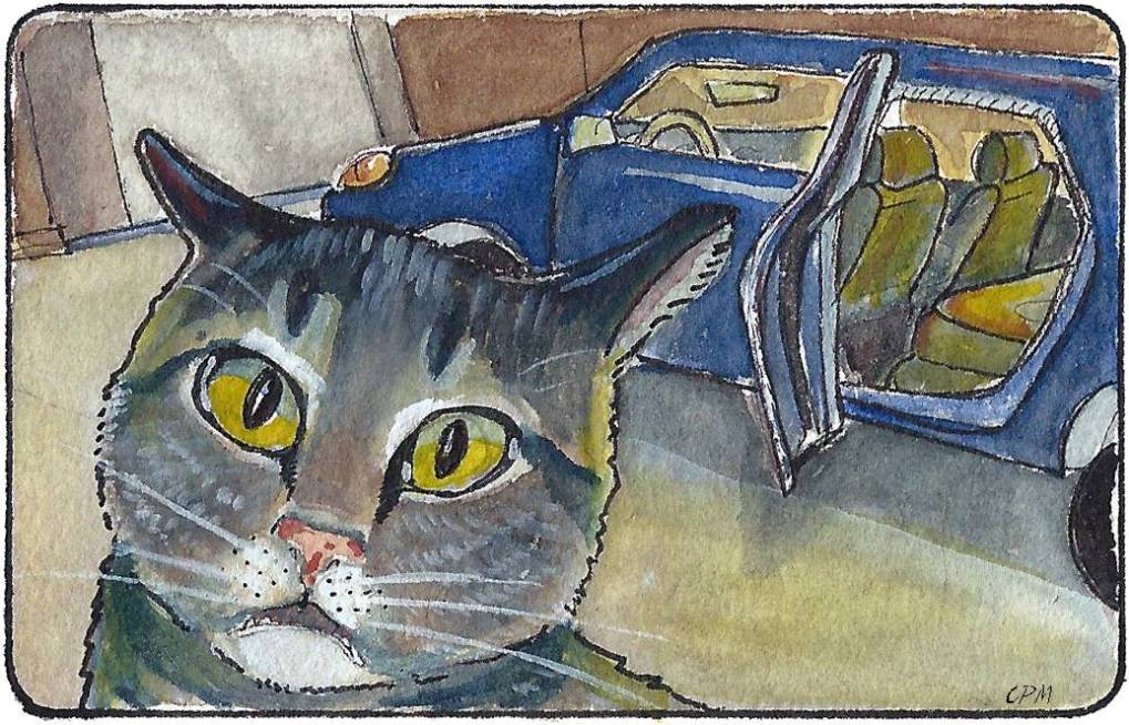 Cat afraid of car. Watercolor drawing.