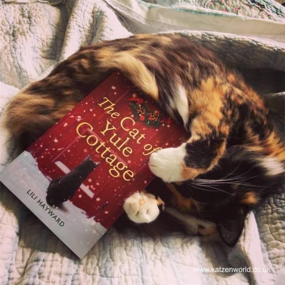 https://i1.wp.com/katzenworld.co.uk/wp/wp-content/uploads/2016/11/cat-and-cat-of-yule-cottage1.jpg?resize=564%2C564&ssl=1