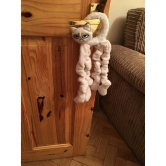 Image result for rosewood GRUMPY CAT TOYS