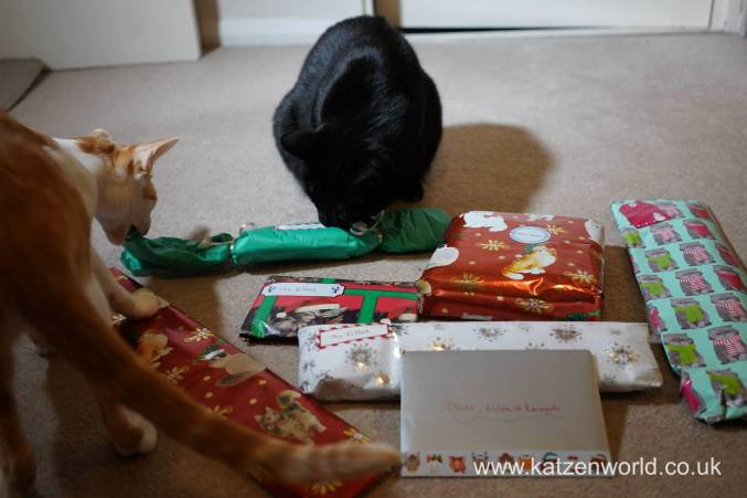 Christmas presents Secret Paw0006