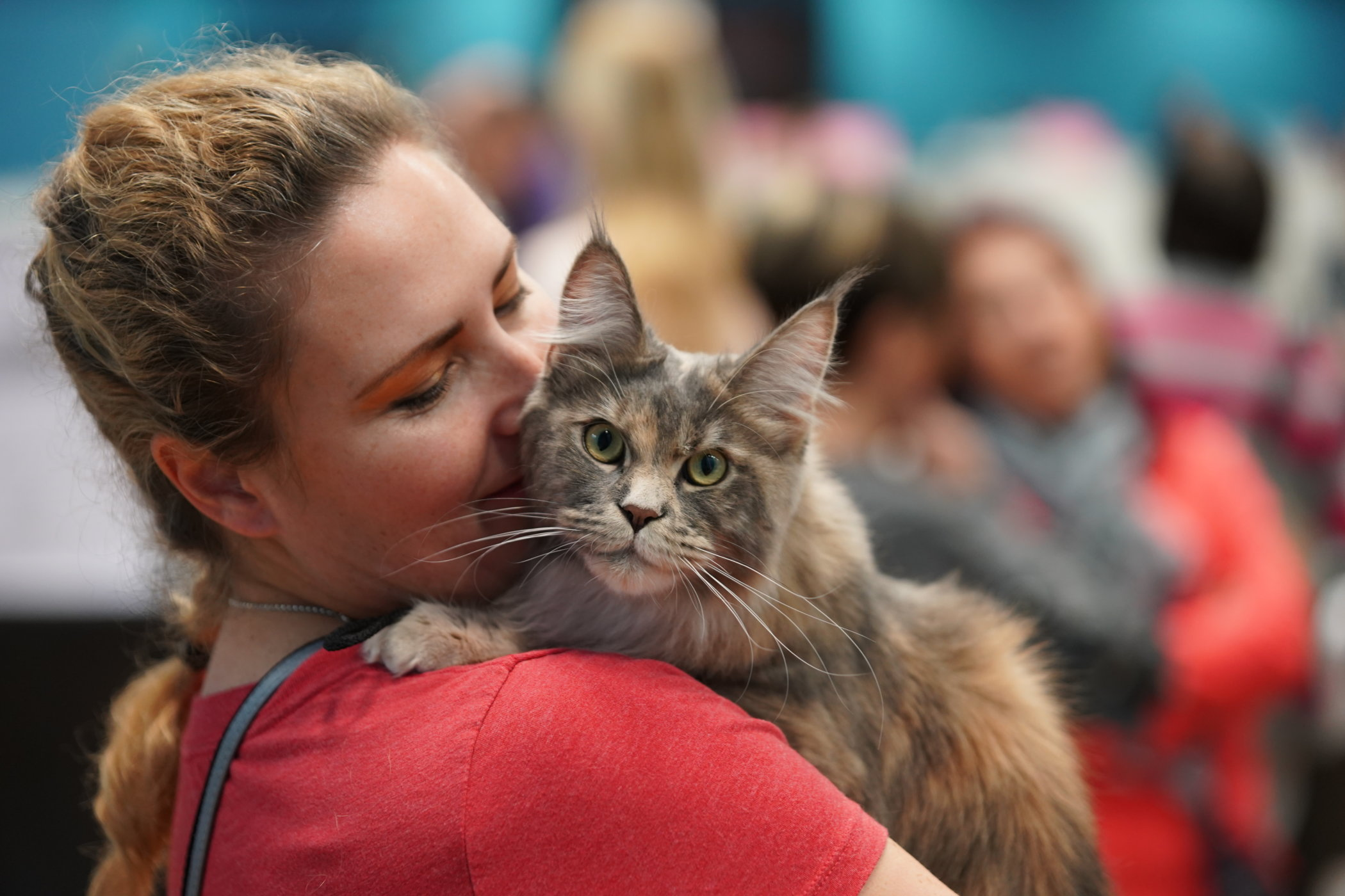 Join us at the May 2018 LondonCats International Cat Show