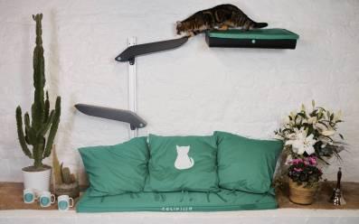 Katzenworld Catipilla0001