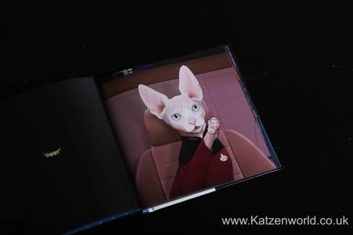 Katzenworld StarTrek Cats0010