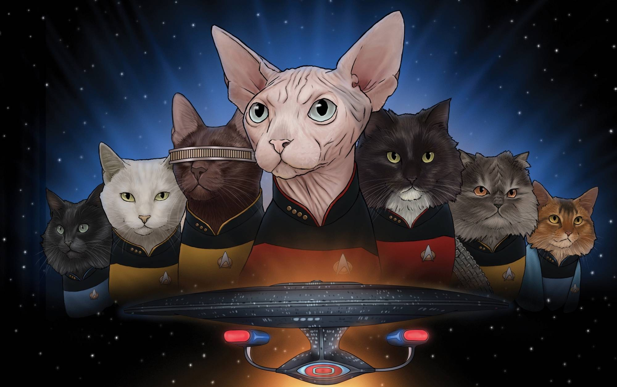 Meow Long and Prosper! Star Trek Cats are Coming to Planet Earth