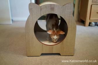 Katzenworld Catit Vesper0014