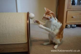 Katzenworld Catit Vesper0020