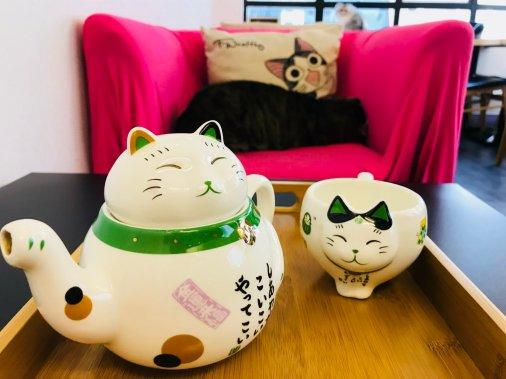 Cafe de Kitten-10