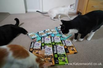 Katzenworld webbox cat treats0004