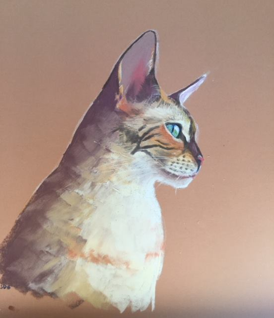 Friday Art Cat: Yuki the Snow Bengal