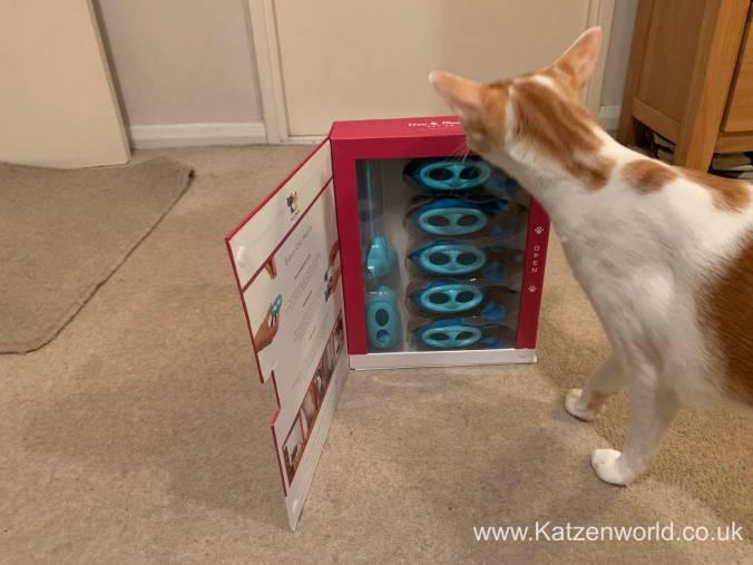 Katzenworld Doc and Phoebe0001