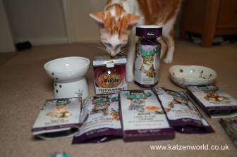 Christmas Guide Katzenworld0022