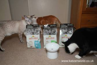 Almo Nature Holistic Katzenworld0001