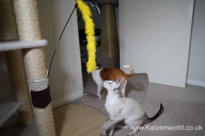 Katzenworld scratch tree cuff0000