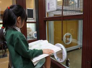 Children from Wendell Park primary school reading to the cats (2)