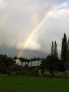 Kauai Property Rainbow